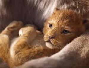 The Lion King Box Office Collection Day 13: ਸਿਨੇਮਾ ਘਰਾਂ 'ਚ ਲਾਇਨ ਕਿੰਗ ਕਰ ਰਹੀ ਹੈ Roar