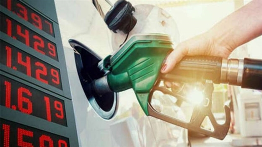 Govt can reduce excise duty on petrol and diesel by up to Rs 8 50 without hurting revenue