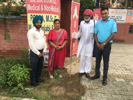 S.S.D. Saplings planted by Om Prakash Gaso, co-founder of the college