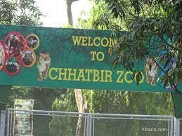 Chhatbir in the state Tiger Safari closed till May 31