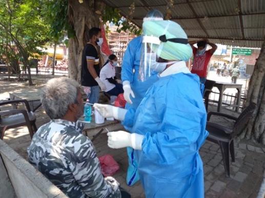 corona virus new cases sampling vaccination camp patiala news punjabijagran