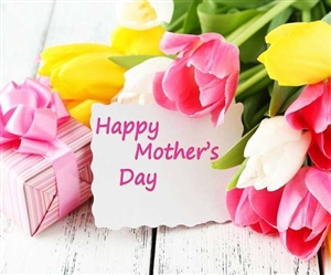 Mother's Day 2021 : ਹਰ ਸਾਲ ਮਈ ਦੇ ਦੂਸਰੇ ਐਤਵਾਰ ਨੂੰ ਮਨਾਇਆ ਜਾਂਦਾ ਹੈ 'ਮਦਰਸ ਡੇਅ', ਜਾਣੋ ਇਸਦਾ ਮਹੱਤਵ ਤੇ ਇਤਿਹਾਸ