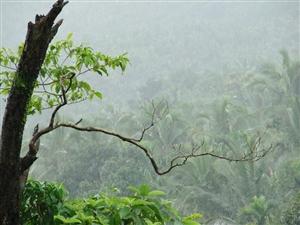 Big News : ਕੇਰਲ ਪੁੱਜਾ ਮੌਨਸੂਨ, ਇਨ੍ਹਾਂ ਥਾਵਾਂ 'ਤੇ ਪਵੇਗਾ ਜ਼ਬਰਦਸਤ ਮੀਂਹ, ਰੈੱਡ ਅਲਰਟ ਜਾਰੀ