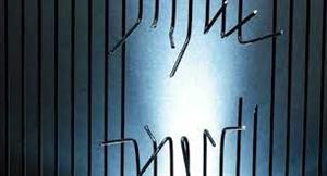 ਰੇਵਾੜੀ 'ਚ ਕੋਵਿਡ ਸਪੈਸ਼ਲ ਜੇਲ੍ਹ 'ਚੋਂ 13 ਬੰਦੀ ਫ਼ਰਾਰ, ਸੰਗੀਨ ਧਾਰਾਵਾਂ ਤਹਿਤ ਦਰਜ ਹਨ ਮਾਮਲੇ