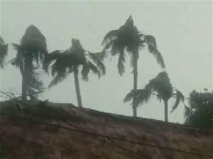Cyclone Bulbul : ਬੰਗਾਲ 'ਚ ਤੱਟ ਨਾਲ ਟਕਰਾਇਆ ਚੱਕਰਵਾਤ 'ਬੁਲਬੁਲ', 9 ਮੌਤਾਂ, ਇਨ੍ਹਾਂ ਸੂਬਿਆਂ 'ਚ ਜ਼ਬਰਦਸਤ ਬਾਰਿਸ਼ ਦਾ ਖਦਸ਼ਾ