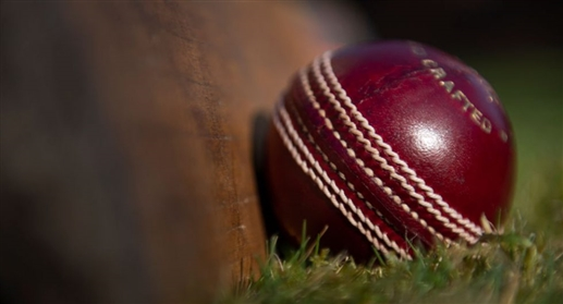Prepared ball without saliva for T20 matches