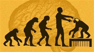 ਚੀਨ 'ਚ ਵਿਗਿਆਨਕਾਂ ਨੇ ਬਣਾਏ ਇਨਸਾਨੀ ਦਿਮਾਗ਼ ਵਾਲੇ ਬਾਂਦਰ