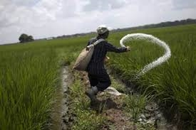farmer against direct benefit transfer of fertilizer subsidy to farmers