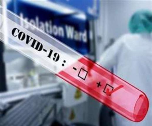 85 new corona patient in jalandhar