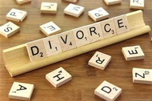 Divorce Case: ਕਾਰ ਖਰੀਦਣ ਗਿਆ ਸਬ-ਇੰਸਪੈਕਟਰ ਲੈ ਆਇਆ ਪਤਨੀ, ਹੁਣ ਮੰਗ ਰਿਹੈ ਤਲਾਕ