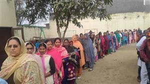 Punjab Local Body Polls 2021 Updates : ਹਿੰਸਕ ਘਟਨਾਵਾਂ ਦੌਰਾਨ ਪੰਜਾਬ 'ਚ 71.39 ਫੀਸਦੀ ਮਤਦਾਨ, ਵੋਟਾਂ ਦੀ ਗਿਣਤੀ 17 ਫਰਵਰੀ ਨੂੰ