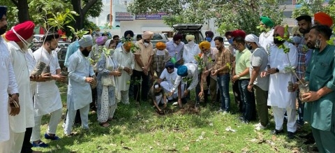 Existence of trees is essential for life on earth and clean environment: Bobby Badal