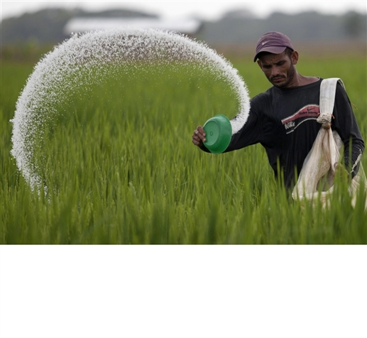 The shift from chemical to organic farming