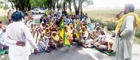 farmer protest against punjabi govt  punjabijagran news