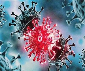 Coronavirus Delta Variant: ਡੈਲਟਾ ਵੇਰੀਐਂਟ ਹੁਣ ਤਕ 111 ਦੇਸ਼ਾਂ 'ਚ ਪਹੁੰਚਿਆ, ਤੇਜ਼ੀ ਨਾਲ ਵੱਧ ਰਹੀ ਮਰੀਜ਼ਾਂ ਦੀ ਗਿਣਤੀ