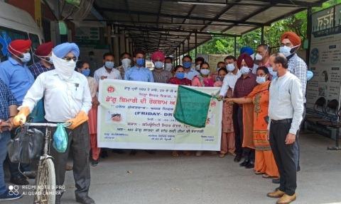 dengue campaign starts friday dry day patiala news punjabi jagran