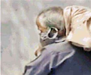 ਜਲੰਧਰ 'ਚ ਬੇਸਹਾਰਾ ਪਿਤਾ ਦੇ ਮੋਢੇ 'ਤੇ ਧੀ ਦੀ ਲਾਸ਼, 'ਜਾਗਰਣ ਸਮੂਹ' ਦੀ ਖ਼ਬਰ ਤੋਂ ਬਾਅਦ ਖੁੱਲ੍ਹੀ ਨੀਂਦ, ਸੁਖਬੀਰ ਬਾਦਲ ਨੇ ਵੀ ਚੁੱਕੇ ਸਵਾਲ