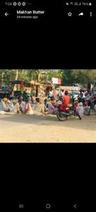 Farmers stage dharna foodgrains market punjabijagran news