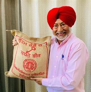 PAU started selling paddy and basmati seeds