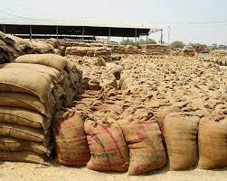 Farmers stage dharna in Bhagiwandar Dana Mandi