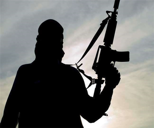 Terrorists plotting to plunge capital into darkness sending messages to farmers