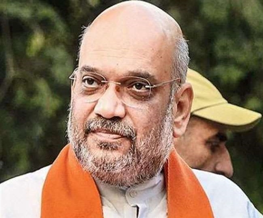 Home minister amit shah twitter account locking issue raised in parliamentary committee
