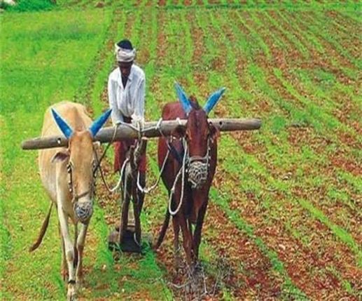 PM Kisan Scheme these farmer families will not get the benefit of this scheme