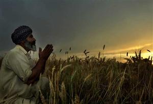 Punjab Weather Forecast Update : ਅੰਮ੍ਰਿਤਸਰ 'ਚ ਤੇਜ਼ ਹਵਾਵਾਂ ਨਾਲ ਪਈ ਜ਼ੋਰਦਾਰ ਬਾਰਿਸ਼, ਗਰਮੀ ਤੋਂ ਮਿਲੀ ਰਾਹਤ, ਕਿਸਾਨ ਚਿੰਤਤ
