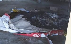 Disrespect Case : ਸ਼ਰਾਰਤੀ ਅਨਸਰਾਂ ਨੇ ਲਾਈ ਮੰਦਰ 'ਚ ਅੱਗ, ਦੇਵੀ ਦੇਵਤਿਆਂ ਦੀ ਕੀਤੀ ਬੇਅਦਬੀ, ਲੋਕਾਂ 'ਚ ਰੋਸ ਦੀ ਲਹਿਰ
