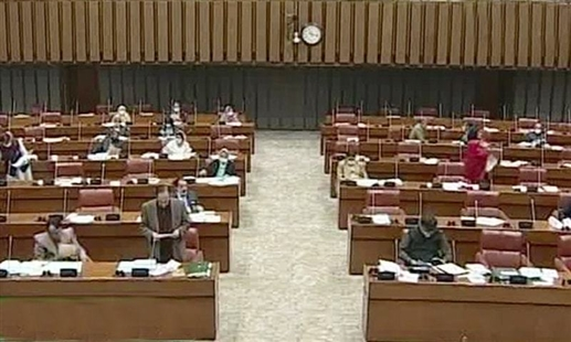 Opposition walks out of Pakistani parliament over Chinese plan