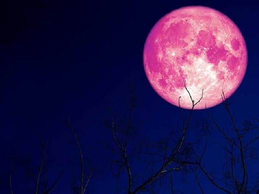 Strawberry Moon 2021 June 24 will see the last Supermoon of the year a glimpse of these two planets will also appear