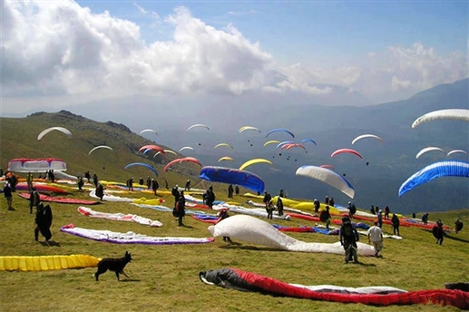 50 paragliders flight in Himachal