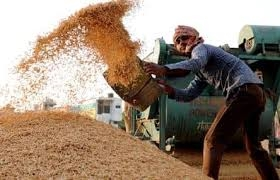 Mandi Board set up special control room for paddy procurement