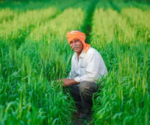 Former bureaucrats in favor of agrarian reform laws