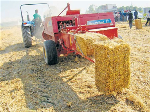 What should a farmer do if he is surrounded by straw