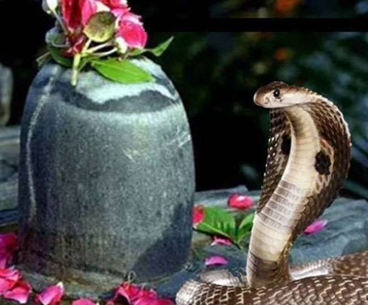 nag panchami 2021 date time muhurat and significance