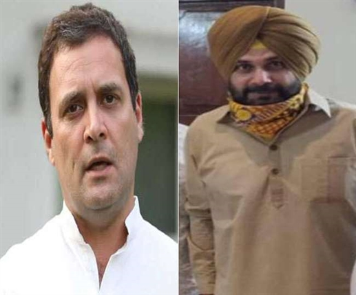 Sidhu may meet Sidhu today possible cabinet reshuffle in Punjab may be important issue of this meeting