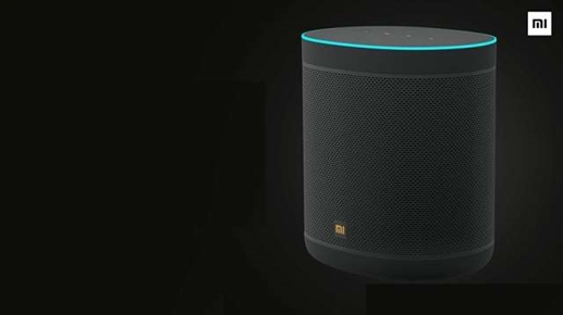 Smart speakers launched in India you can use it by speaking in Hindi know the price and specification
