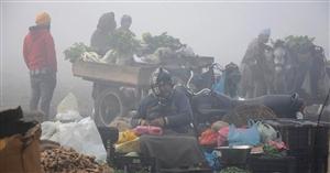 ਸੀਤ ਲਹਿਰ ਨਾਲ ਕੰਬਿਆ ਉੱਤਰੀ ਭਾਰਤ, ਜੰਮੂ-ਕਸ਼ਮੀਰ ਤੇ ਹਿਮਾਚਲ 'ਚ ਅੱਜ ਹੋ ਸਕਦੀ ਹੈ ਬਾਰਿਸ਼ ਤੇ ਬਰਫ਼ਬਾਰੀ